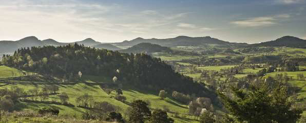 Auvergne Rhone alpes Offre de collaboration ou remplacement
