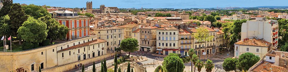 VIDI – Annonce recrutement IMACAM – Montpellier