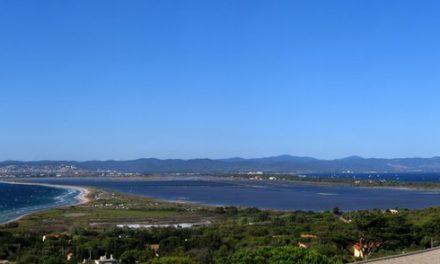 VIDI – Annonce recrutement CIMTHL – Toulon-Hyères