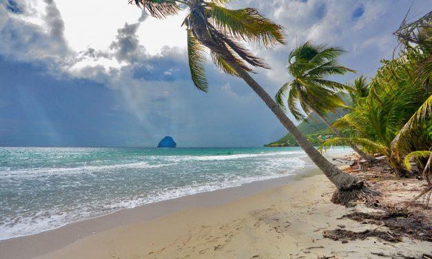 REMPALCEMENTS/ASSOCIATION (Martinique)